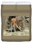 Baby Giraffe 1 Duvet Cover