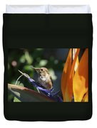 Baby Hummingbird On Flower Duvet Cover