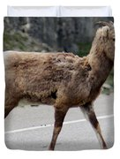 Baby Mountan Goat Crossing Road Duvet Cover