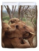 Baby Orphans Explore Imenti Tsavo Kenya Duvet Cover