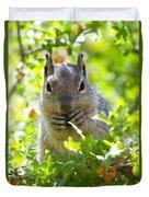 Baby Rock Squirrel  Duvet Cover