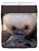 Baby Sloth 2 Duvet Cover