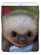 Baby Sloth Duvet Cover