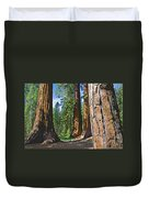 Bachelor And Three Graces In Mariposa Grove In Yosemite National Park-california Duvet Cover