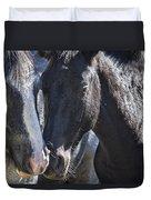 Bachelor Stallions - Pryor Mustangs Duvet Cover