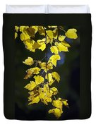 Backlit Leaves Of Autumn Duvet Cover