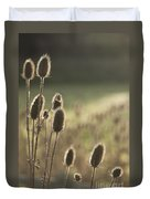 Backlit Teasel Duvet Cover