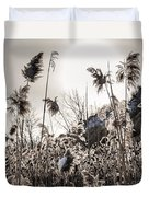 Backlit Winter Reeds Duvet Cover