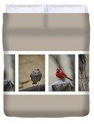 Backyard Bird Set Duvet Cover
