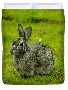 Backyard Bunny In Black White And Green Duvet Cover