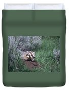 Badger In Yellowstone Duvet Cover