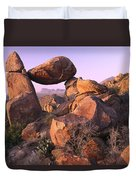 Balanced Rock In The Grapevine Duvet Cover