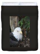 Bald Eagle #3 Duvet Cover