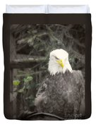 Bald Eagle Duvet Cover by Dawn Gari