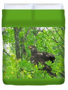 Bald Eagle In A Tree  Duvet Cover
