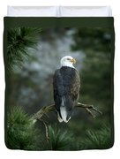Bald Eagle In Tree Duvet Cover