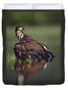 Bald Eagle Juvenile British Columbia Duvet Cover