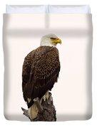 Bald Eagle On A Snag Duvet Cover
