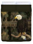Bald Eagle On Dead Snag Wildlife Rescue Duvet Cover