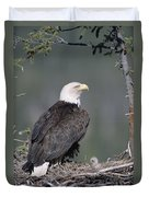 Bald Eagle On Nest With Chick Alaska Duvet Cover by Michael Quinton