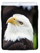 Bald Eagle - Power And Poise 01 Duvet Cover