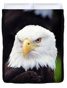 Bald Eagle - Power And Poise 02 Duvet Cover