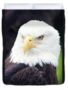 Bald Eagle - Power And Poise 04 Duvet Cover