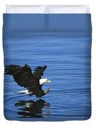 Bald Eagle Striking Kenai Peninsula Duvet Cover