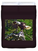 Bald Eagle With A Broken Wing In Salmonier Nature Park-nl Duvet Cover
