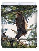 Bald Eagle With Eaglet Duvet Cover