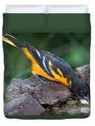 Baltimore Oriole Drinking Duvet Cover