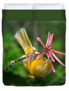 Baltimore Oriole Feeding On Coral Bean Duvet Cover