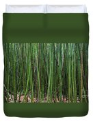 Bamboo Forest 3 Duvet Cover