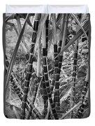 Bamboo-waimea Arboretum  Duvet Cover