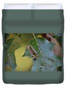 Banded Tussock Moth Caterpillar Duvet Cover