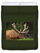 Banff Elk Duvet Cover