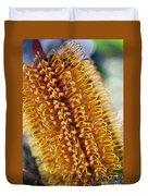 Banksia Flower Duvet Cover