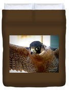 Barbary Falcon Wings Stretched Duvet Cover