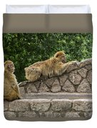 Barbary Macaques Duvet Cover
