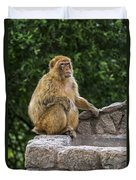 Barbary Macaque Duvet Cover