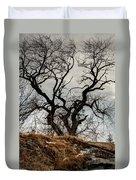 Bare Tree On The Hill Duvet Cover