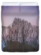 Bare Trees And Autumn Sky Duvet Cover