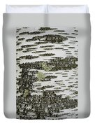 Bark Of Paper Birch Duvet Cover