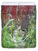 Barn Kitten Duvet Cover