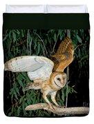 Barn Owl Alights Duvet Cover