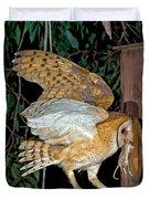 Barn Owl With Prey Duvet Cover