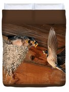 Barn Swallow Nest Duvet Cover by Scott Linstead