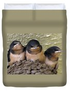 Barn Swallows 1 Duvet Cover