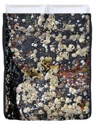 Barnacles Duvet Cover