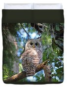 Barred Owl And Holly Duvet Cover